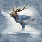 Elk Panel